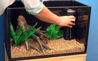 Установка аквариума: инструкция и полезное видео – домашняя аквариумистика