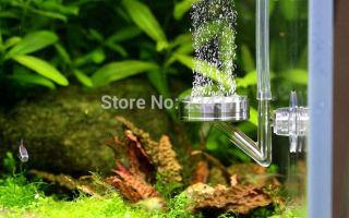 Современный природный аквариум: установка системы co2 – домашняя аквариумистика