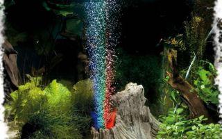 Выбираем аквариумный компрессор и 3 лучших аэратора для аквариума – домашняя аквариумистика