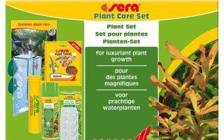Системный уход за растениями sera – домашняя аквариумистика