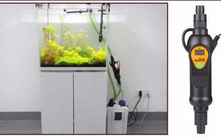 Обогреватели для маленьких аквариумов, выбираем! – домашняя аквариумистика