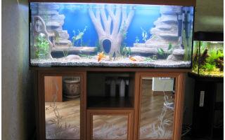 Лучше изготовить крышку для аквариума самостоятельно или найти готовые решения? – домашняя аквариумистика