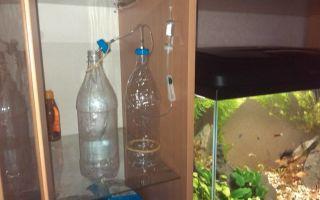 Со2 в аквариум – брага – домашняя аквариумистика