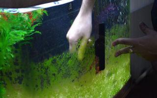 Крышка для аквариума своими руками. часть 3 – домашняя аквариумистика