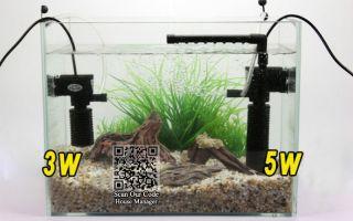 Выбор помп для аквариума (2 в 1): фильтр и компрессор – домашняя аквариумистика