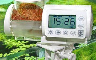 Автокормушки для рыб: какую выбрать? – домашняя аквариумистика